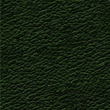 17_7378_0374_Leather DARK GREEN