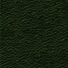 17_7378_0374_Leather DARK GREEN