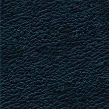 17_7379_0374_Leather NAVY BLUE