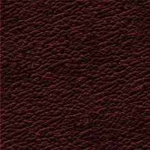 17_7380_0374_Leather BURGANDY