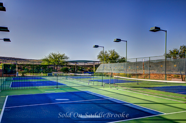 Pickle Ball Court at The Preserve